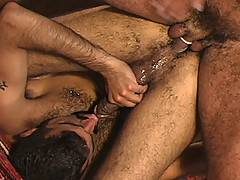 Sarib is a genuine hairy Middle Eastern stud, who fucks like something in heat! Joey Russo shines as a bottom and takes cock like he is starving for it! And wha...