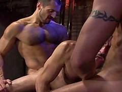 Armed with his tool handyman Michael Solider makes a pass at French superstar Taurus. Then, from a shadowed corner of the room comes coverman and international ...
