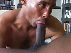 These thug guys are hot, well-hung hunks who have muscular and well defined dark chocolate bodies. The ebony stallions inside are sucking dick and giving a good ass fucking to each other. These horny dudes just cant get enough dick in their ass and theyll