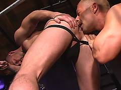 Superstar performer Doug Jeffries makes his Raging Stallion debut with fellow stud Owen Hawk. This is a flip flop of intense power, with cocks driven into holes...