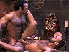 For lovers of hairy men with perfect bodies and rock hard cocks, this is the pairing of a lifetime! Furry hunk Huessein and hairy super stud Steve Cruz are on t...