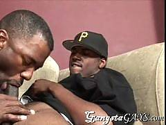 Thugalicious brothas from da hood pounding each others hot asses and tasting each others warm cum. This gay site features hot guys that you don't often see in the gay community...gangsta gays! Lots of thugged out, muscular black men. Both bareback and con