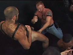 If you like your hairy boyz hardcore, you're going to love this orgy scene. Clad in leather and studs, these rugged hunks have piercings spread across their bo...