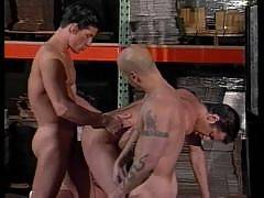 Men DVD Peak is the ultimate in gay porn dvd downloads, gay sex dvd's, gay porn clips and videos, hardcore gay porn, bears, boy, and straight boy gay fucking on the down low.
