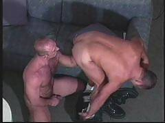 The largest male-on-male site with thousands of downloadable videos, sexy men with huge cocks & tight asses, free pass for hardcore xxx gay sites.