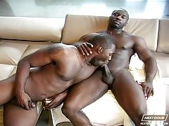 Watch the best black gay porn videos and hot, hung black men in hardcore gay sex videos. Start watching the best collection of hot black gay porn videos now!