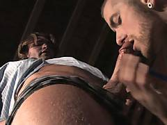 RJ Danvers (the hottest hairball in the biz) and David Taylor (the unfaultable tattooed muscle stud) join forces in this rough vid. RJ works Davids fat dick fro...