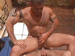 The hairest gay bears are caught on film in hardcore gay action. These thick chested, hairy boys are pumping their cocks as if their lives depended on it. Watch them in hard pounding anal, cum sucking oral, and even group sex inside this awesome gay hardc