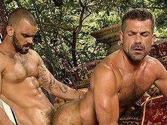 Two hot mature bears enjoy rough anal fucking