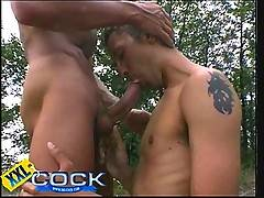 Down on his knees sucking off a huge uncut cock