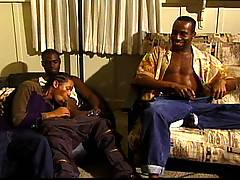 Seven hot and horny black hunks go wild together in this big, bad, black gangbang. Who would have thought there was so many ways to suck cock!? Well these hung ...
