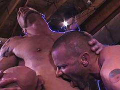 Starting in the dark with all identities hidden, this wall-to-wall orgy quickly turns into muscle versus muscle. All of these men have a hunger for each other a...