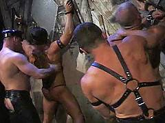 Joe Stack and his cadre of real leather muscle studs burn up the video screen in a brutally intense journey to the darkest corners of S&M. Not for the faint of ...