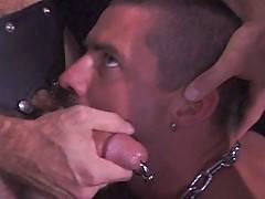 Leather daddy Chris Ward delivering a thorough lashing to beautiful blackman-in-bondage Simon Cox (in his first film!).  Shocking in the extreme, this scene is ...